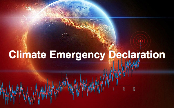 News: Hexham elects Climate Emergency group